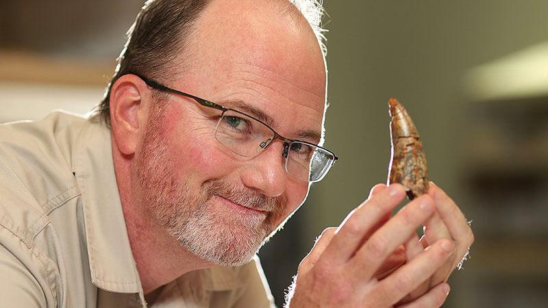 image shows australian palaeontologist doctor scott hocknull holding a dinosaur tooth