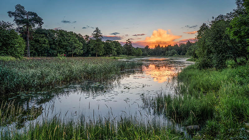 image shows a pleasant stream with storm clouds looming in the background