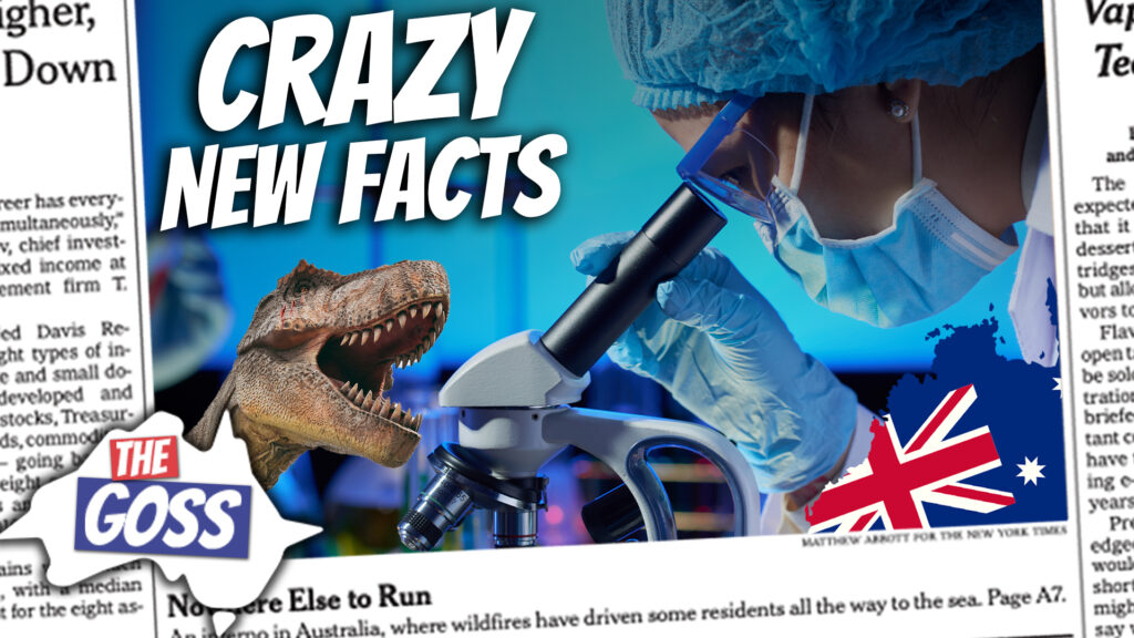 pete smissen, host of aussie english podcast, the goss australia, ian smissen father, talk about new facts discovered about t rex, new facts tyrannosaurus rex, new discovered facts on t rex, new facts discovered about dinosaurs