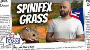 pete smissen, host of aussie english podcast, the goss australia, ian smissen, spinifex grass, what is grass rings, spinifex grass australia, weird grass australia, why spinifex grow in rings, mysterious grass australia