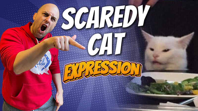 pete smissen, host of aussie english podcast, english expression, what is scaredy cat, scaredy cat meaning,