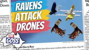 pete smissen, aussie english podcast, learn english australia, learn english with pete, learn language podcast, australian podcast host, learn english podcast, learn english online course ian smissen, the goss australia, australia news opinion, coffee delivery drones australia, raven australia, wing delivery australia, birds attack delivery drones